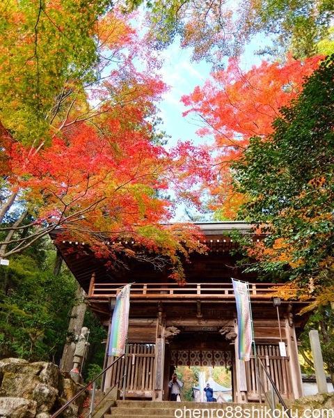 大窪寺山門の紅葉