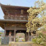 【発心の道場・徳島】四国霊場第一番札所から第十一番札所まで一気に打ちました。