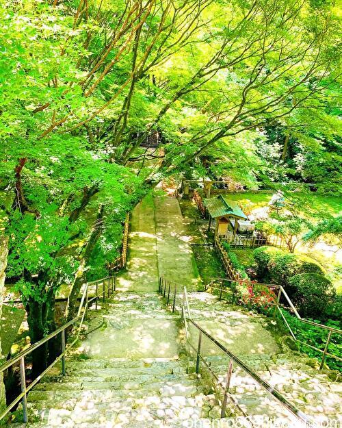 根香寺の石段
