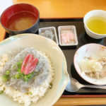 【高知県安芸市】あこがれの生しらす(どろめ)を食べました!