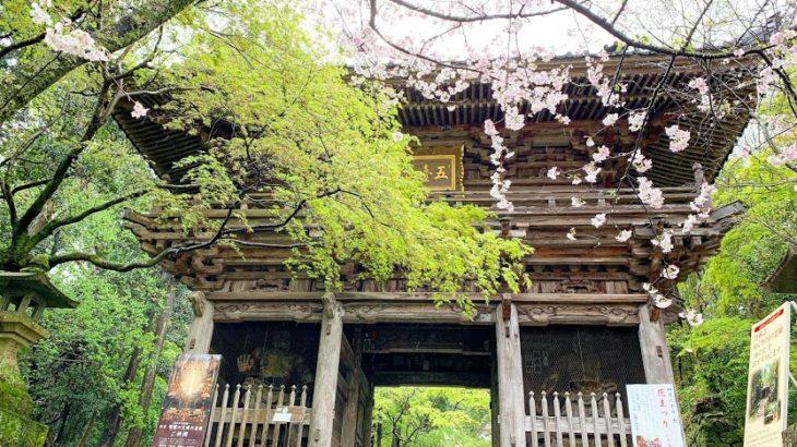 【高知県】四国八十八ヶ所と別格霊場の地図と所要時間