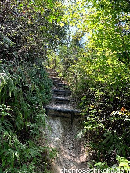 嶽山登山道階段