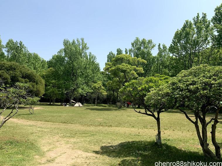 田ノ浦キャンプ場