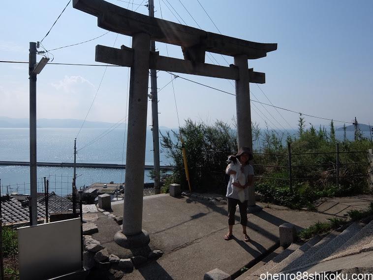 豊玉姫神社の天空の鳥居
