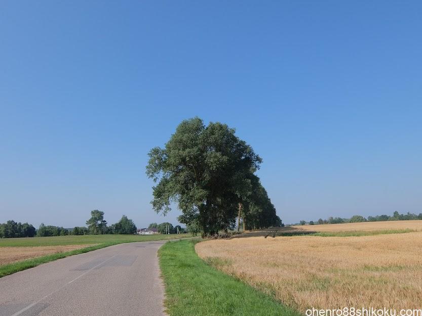 十字架の丘までの道