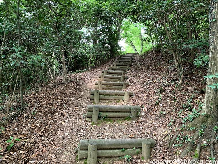高鉢山登山道