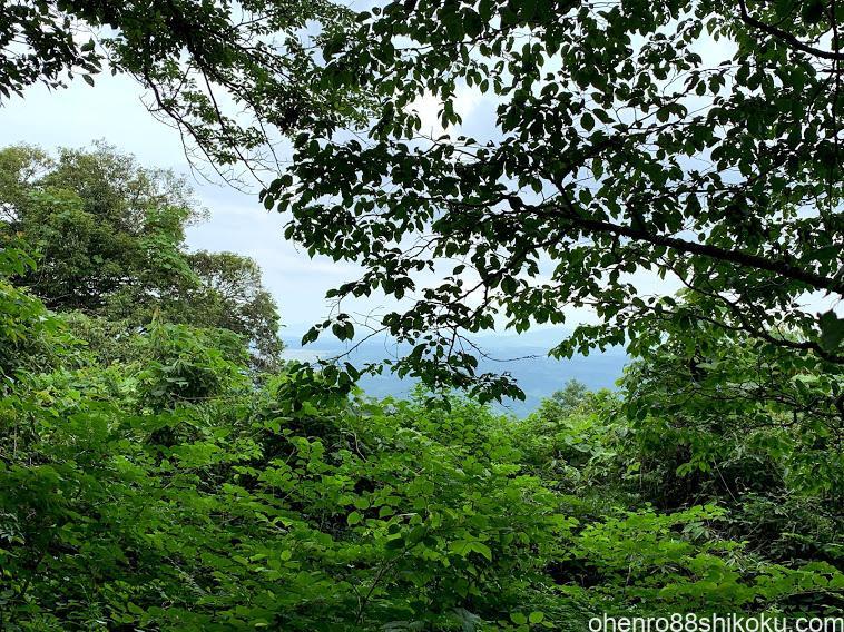 高鉢山山頂